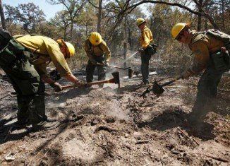 Firefighters from the Lassen National Forest in Calif are cleaning hot spots in Bastrop Texas (Photo: Eric Schlegel - POOL / AP)