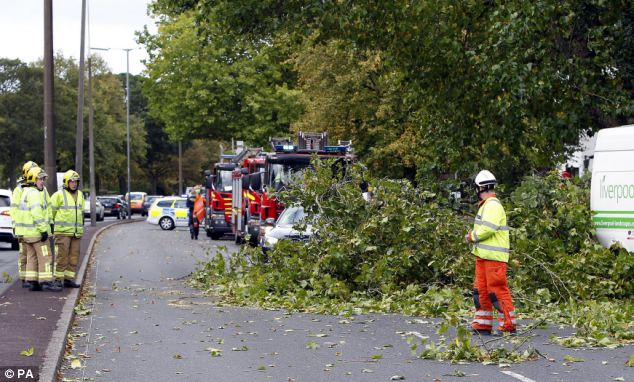 British weather forecasters warned that gusts of up to 80 mph (c 135 kmh) would batter buildings, uproot trees and cause travel chaos