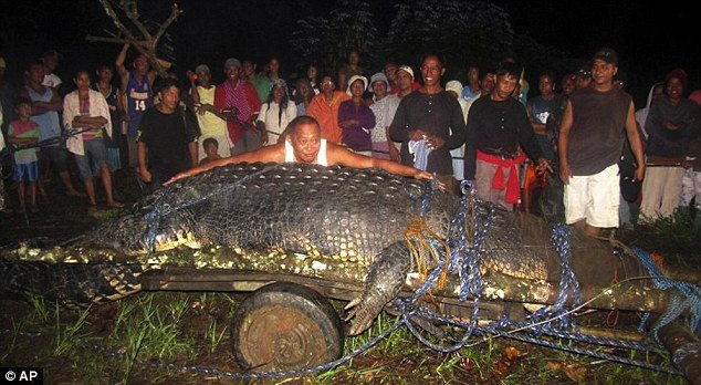 Many of the villagers posed beside the captured monster crocodile before it was driven off to a confined area