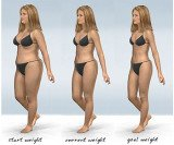 Diets Weight Loss