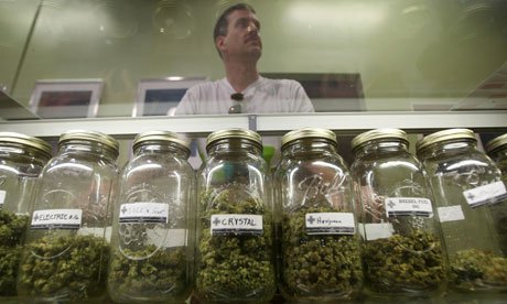 California, which permitted medical marijuana in a referendum in 1996, is by far the leader in the field, with some reports suggesting it has more dispensaries than Starbucks coffee houses