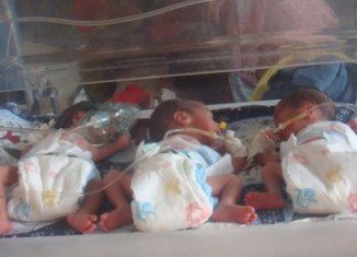 All six babies are well but under-weight, with one only weighing about 700g