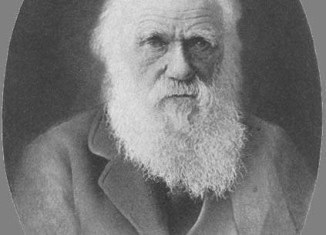 Researchers assumed Charles Darwin kept a letter from Alfred Russel Wallace, also with theories about natural selection, for two weeks - enabling him to revise elements of his own theory of evolution, before announcing it to the world in July 1858