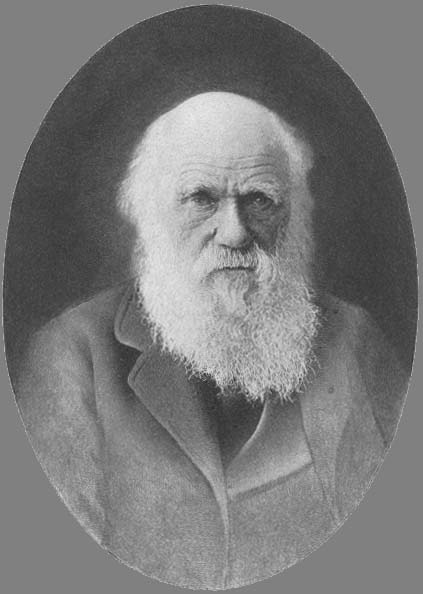 Researchers assumed Charles Darwin kept a letter from Alfred Russel Wallace also with theories about natural selection for two weeks enabling him to revise elements of his own theory of evolution before announcing it to the  photo