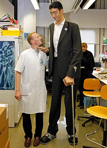 Sultan Kosen, the world's tallest man, may have finally stopped growing at a towering 8ft 3ins (251.4 cm) thanks to a pioneering new treatment