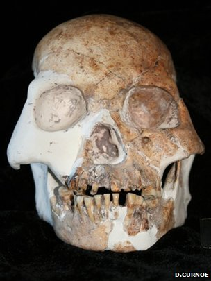 The remains of at least five individuals from a previously unknown human species have been identified in southern China