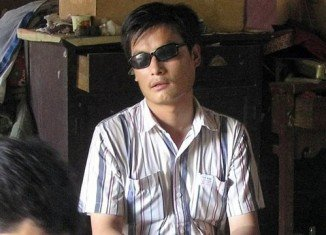 Chen Guangcheng has phoned a US Congressional hearing to plead for help in his attempts to leave China with his family