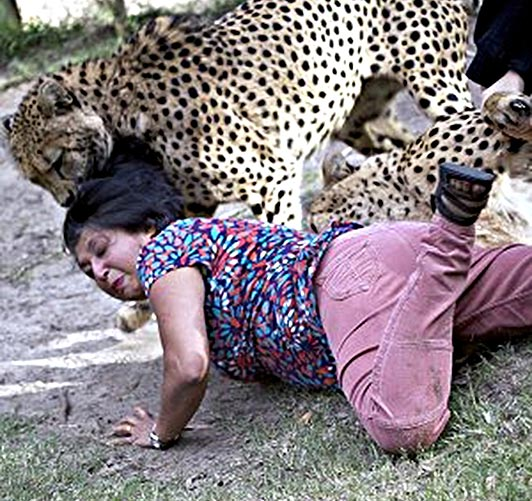 """Violet D'Mello said she survived by """"playing dead"""" at the Kragga Kamma Game Park in Port Elizabeth, South Africa last weekend"""