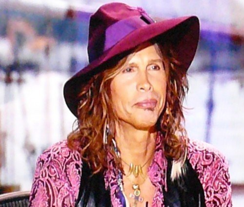 Steven Tyler has announced he is quitting American Idol show to