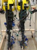 The most biologically-accurate robotic legs yet has been developed by US experts