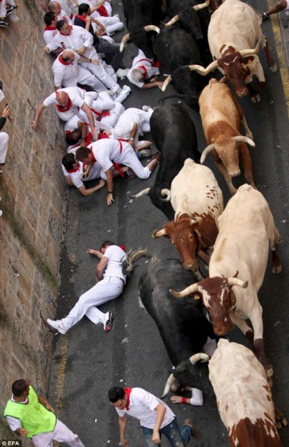 This years Pamplona bull running festival kicked off today with one thrill seeker was gored in a leg and four others injured 415x640 photo