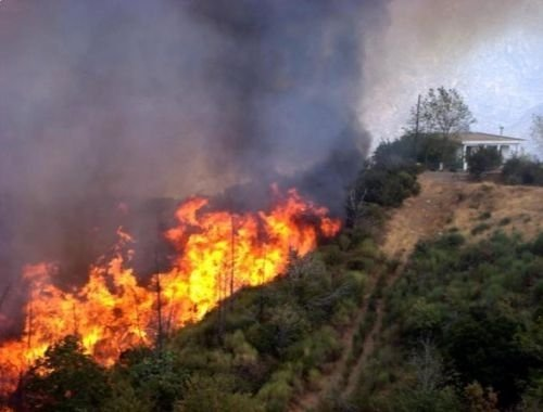Firefighters in Greece are battling a large forest fire sweeping across the eastern Aegean island of Chios