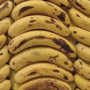 Bananas rotting could be stopped by seafood film