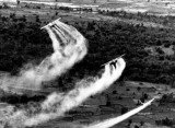 The US has begun a project to help clean up Agent Orange contamination in Vietnam after 37 years since the war ended
