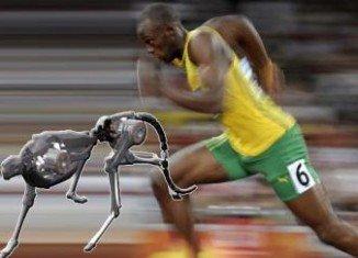 Cheetah robot has set a new world speed record for legged robots, running faster than Usain Bolt