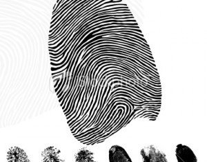 The vast majority of people are born with a unique set of fingerprints which remain the same for life