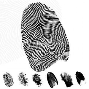 The vast majority of people are born with a unique set of fingerprints which remain the same for life photo