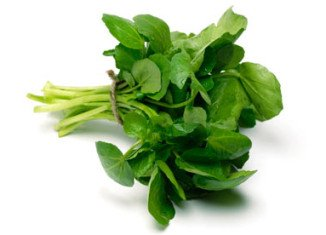 Ten out of 11 female volunteers experienced visible improvements to their skin after just 4 weeks of adding one bag of watercress a day to their diet