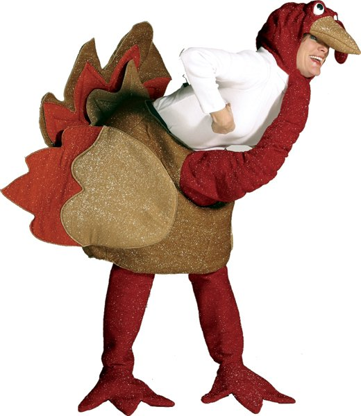 Thanksgiving turkey costume for Halloween