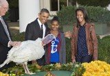 Barack Obama chooses Cobbler over Gobbler as National Thanksgiving Turkey