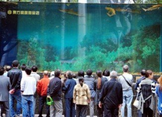 A 33-ton glass shark tank at the Shanghai Orient shopping centre suddenly burst leaving 15 people injured by flying shards of broken glass and a torrent of water
