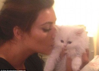 Kim Kardashian received the white Persian kitty from her rapper boyfriend Kanye West last September, but was unable to care for it herself after discovering she was allergic