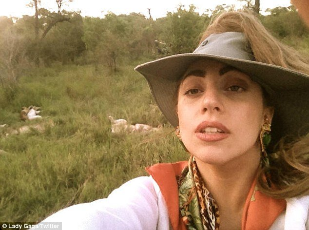 Lady Gaga got up close and personal to some Lions as she went on safari in South Africa