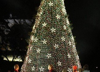 President Barack Obama and his family have flipped the switch for the 90th annual lighting of the National Christmas Tree