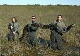The Florida Fish and Wildlife Conservation Commission has announced this week a month-long hunt for Burmese pythons offering a $1,500 prize to the person who harvests the most snakes