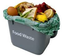 A UK based report has found that as much as half of the worlds food amounting to two billion tonnes worth ends up being thrown away photo