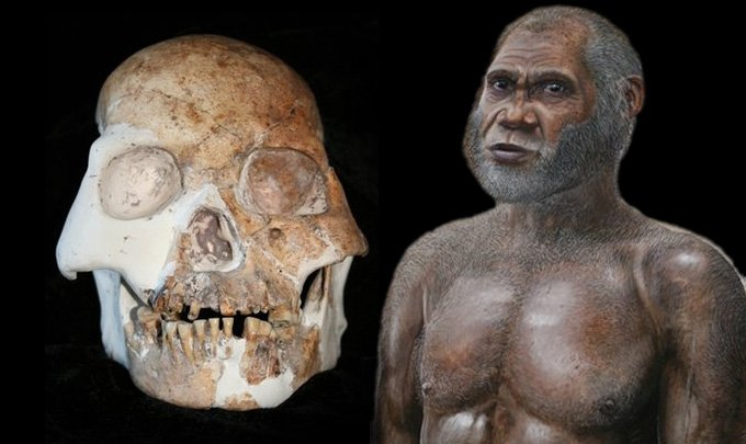 the general characteristics of fossils categorized as archaic homo sapiens This includes the fossils of homo sapiens, archaic the problem in the evolutionary fossil record is not the fossils that would be easily categorized with.