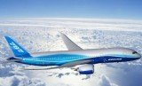 Boeing has decided to suspend deliveries of its new 787 Dreamliner jet until a battery problem is resolved