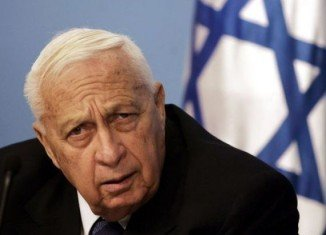 Former Israeli PM Ariel Sharon, who has been in a coma for seven years, has shown significant signs of brain activity