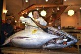 Sushi chain owner Kiyoshi Kimura has bought the bluefin tuna for 1.7 million, almost triple the record price set last year