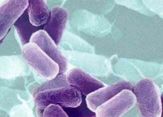 CDC is warning doctors to be on the lookout for untreatable multidrug-resistant CRE superbug emerging in the US