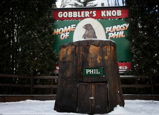 Pennsylvania's famous groundhog Punxsutawney Phil gave his annual prediction of how long winter will last