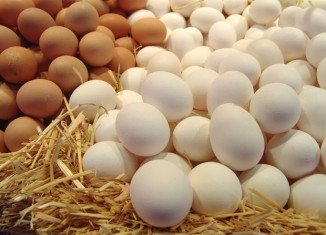 German authorities in the northern state of Lower Saxony are investigating allegations of fraud over the mislabelling of eggs as organic