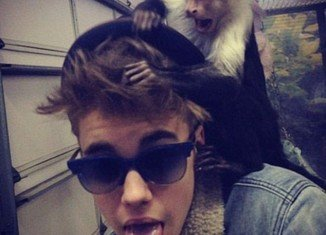 Justin Bieber's monkey was seized by customs officials after the singer demanded Mally accompany him on a long-haul flight to Germany