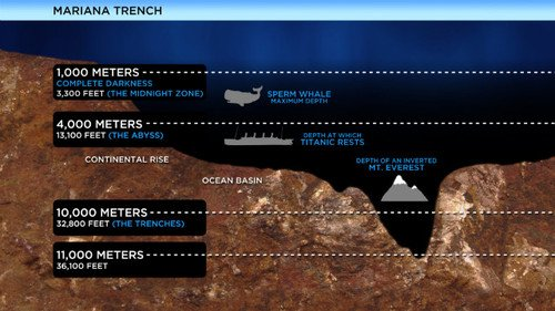 Mariana Trench was once thought to be too hostile an environment for life to exist