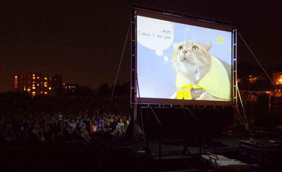 A second edition of the Internet Cat Video Festival, dedicated to celebrating internet videos of cats, is due to take place in Minnesota in August 2013