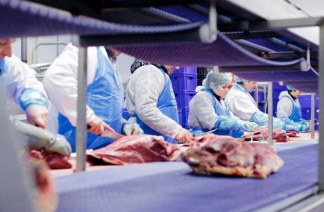 Dutch authorities have found that 50,000 tonnes of meat supplied by two local trading companies and sold as beef across Europe since January 2011 may have contained horsemeat
