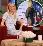 Gwyneth Paltrow has branded the revealing Antonio Berardi dress she wore it at this week's Iron Man 3 premiere a disaster and humiliating