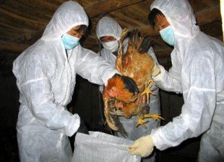 Six people died in China since the outbreak of a new strain of bird flu