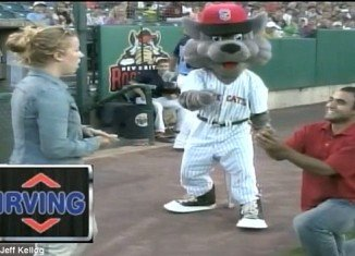 David was thrown a curve ball after asking his girlfriend Jessica to marry him at a New Britain Rock Cats minor league game in Connecticut