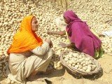 India's Food Security Bill aims to provide subsidized food to two-thirds of the population