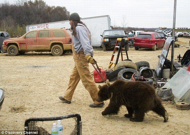 Porter Ridge's Jeff the Bear Man keeps eight brown bears in his back garden photo