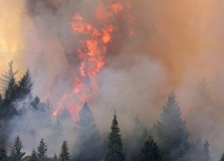 Yosemite Park blaze has forced scores of tourists to flee during peak season and is threatening thousands of homes