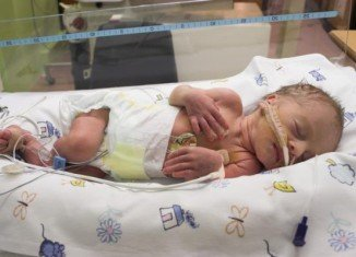 Rubbing a dose of sugar gel into the inside of the cheek of premature babies is a cheap and effective way to protect them against brain damage