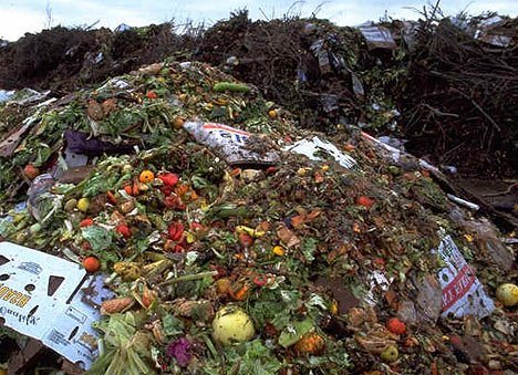 The food the world wastes produces more greenhouse gas emissions than any country except for China and the US photo
