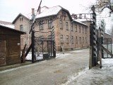 Thirty former Auschwitz death camp guards should face prosecution in Germany